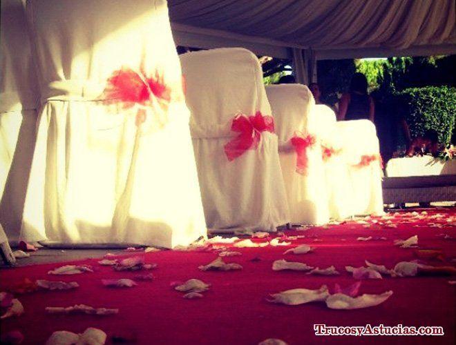 consejos para hacer un buen discurso de boda civil