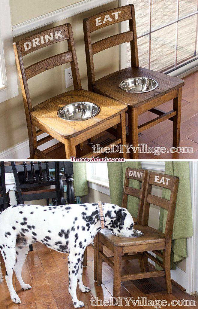 reciclar sillas: comedero y bebedero para perro