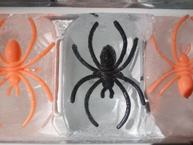 decoración para Halloween casera con cubitos de hielo con insectos