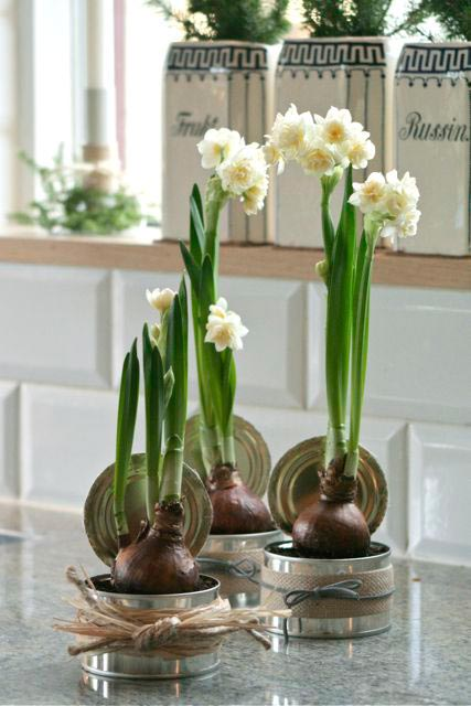 28 centros de mesa floreros y macetas para hacer con for Como hacer adornos con plantas naturales