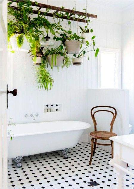 escalera para decorar un baño con plantas