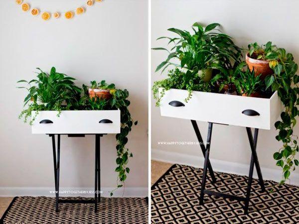 cajon reutilizado como mesa para plantas