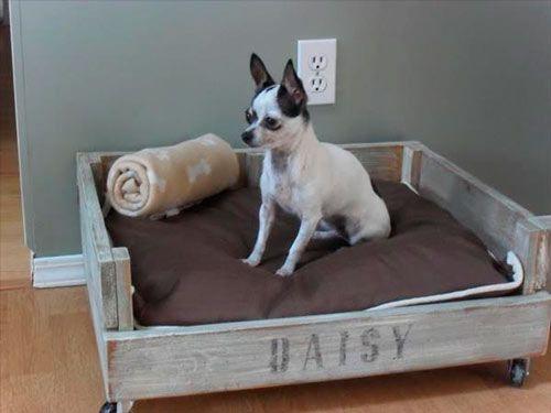 17 originales camas para perro que t puedes hacer - Casa de perro con palets ...