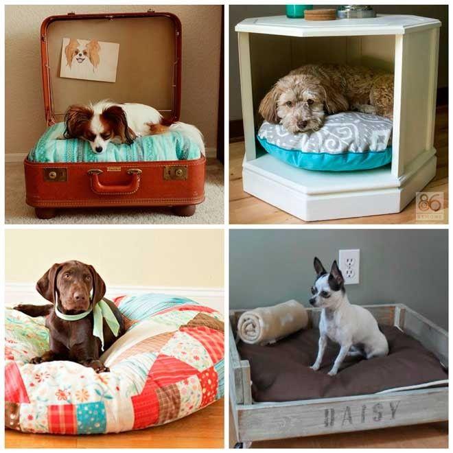 17 originales camas para perro que t puedes hacer - Remedios caseros para que mi perro no muerda los muebles ...