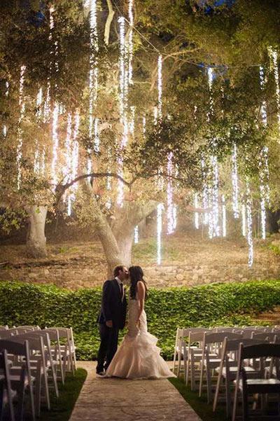 tiras de luces colgadas de un árbol para decorar un banquete de boda diy