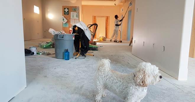 truco para mudanzas: limpiar y pintar antes de entrar