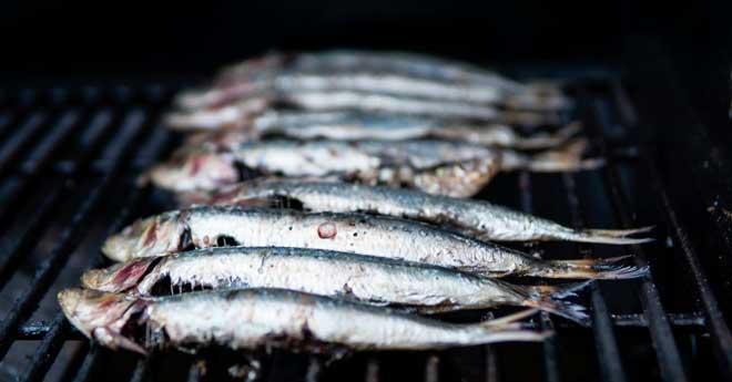 celebracion de la noche de san juan comiendo sardinas en la playa