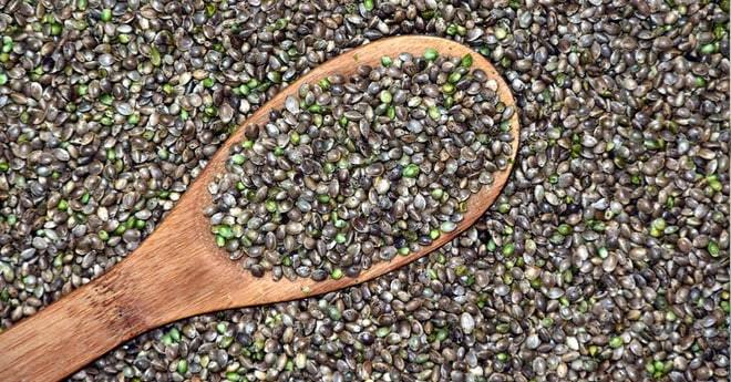 semillas de cáñamo para paliar el dolor articular de la artritis