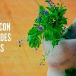 7 Flores con Propiedades Medicinales perfectas para tu Salud
