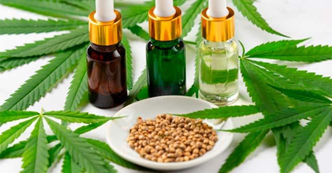 cómo elegir las mejores semillas de marihuana al peso